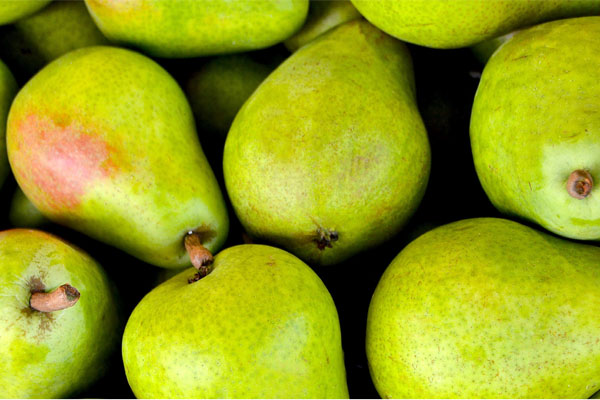 Group of green pears.